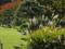 浜離宮恩賜庭園 2013-11-13