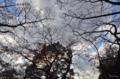 [空][雲]2013-11-26