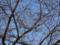藍染大通り 2012-12-06