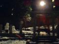 [東京][神社]根津神社 2014-02-11