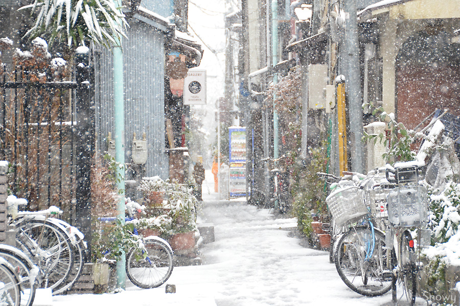 根津 2012-02-29