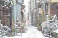 [東京][街角]根津 2012-02-29