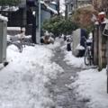 [東京][街角]根津 2014-02-15