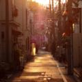 [東京][街角]千駄木 2013-04-15