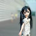[doll]夏の日のあずにゃん