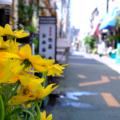 [東京][街角]2014-08-07@根津