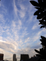[空][雲][夕焼け]夕暮れ 2014-08-07