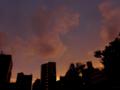 [空][雲][夕焼け]2014-08-10