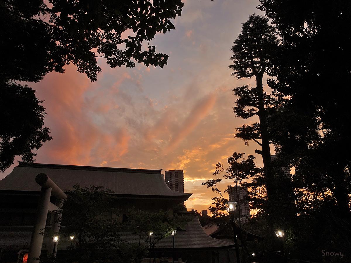 上野公園 2014-09-20