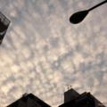 [空][雲][夕焼け]2014-09-19