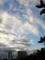 2014-10-14 台風一過の朝
