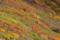 にかほ市鉾立展望台 2014-10-07