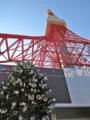 [東京][東京タワー]東京タワー 2006-11-12