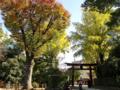 [東京][神社][谷根千]根津神社 2014-11-10