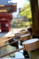 [東京][谷根千][神社]根津神社 2015-01-19