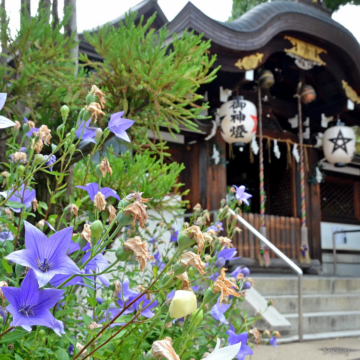 晴明神社 2014-07-17