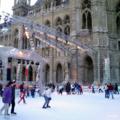 [ウィーン]ウィーン市庁舎前のスケートリンク 2003-02-14