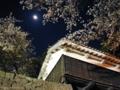 [熊本][城]熊本城と桜と月 2001-04-04