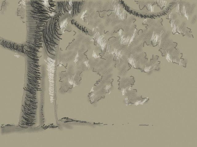 木のデッサン (1)