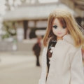 [doll][JeNnY]愛宕神社にて(2017-02-25)