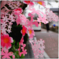 [柳川][街角]柳川 (2017-03-23)