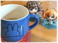 朝のお茶(2017-05-13)