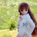 [doll][アゾン]MAYA@秋吉台 (2017-05-27)