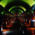 [山口]3億年のタイムトンネル@秋芳洞