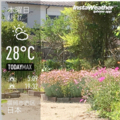 [Instaweather]2017-06-22