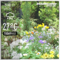 [Instaweather]2017-06-29