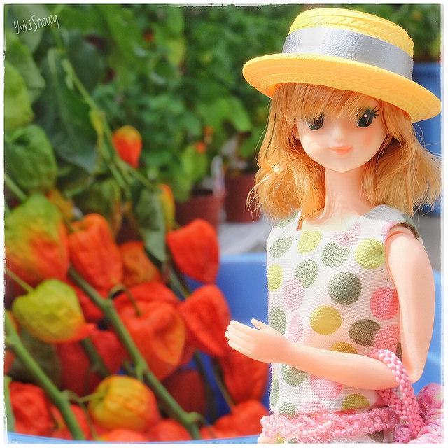 ルイーズ@愛宕神社ほおずき夏祭り