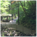 [山口]秋芳洞前の歩道(2017-05-27)