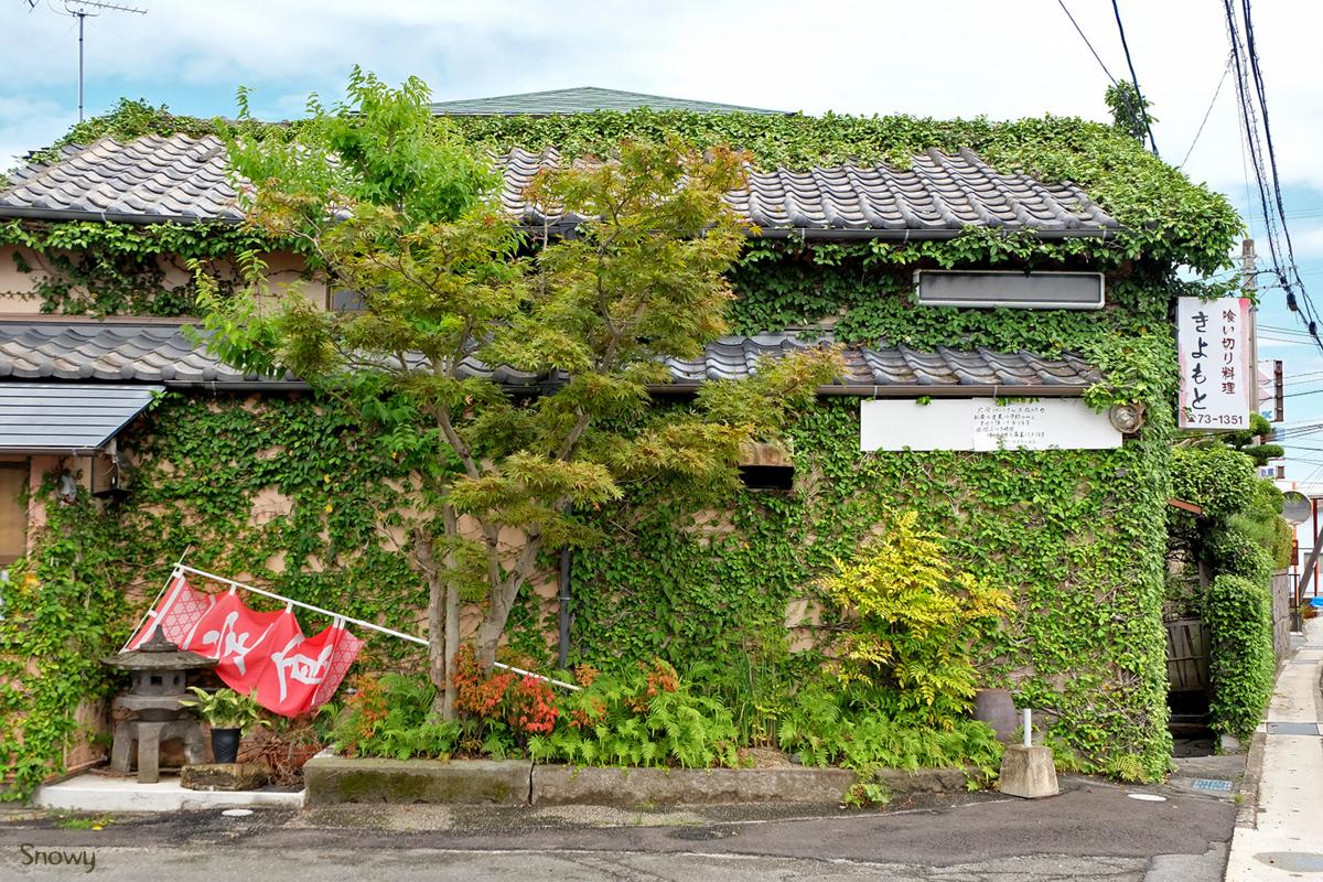 柳川(2017-08-03)