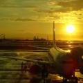 [空][雲][夕暮れ][黄昏][飛行機][空港]那覇空港(2017-09-10