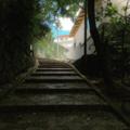 [沖縄][階段]首里金城町石畳道(2017-09-10)