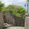 金城町石畳道(2017-09-10)