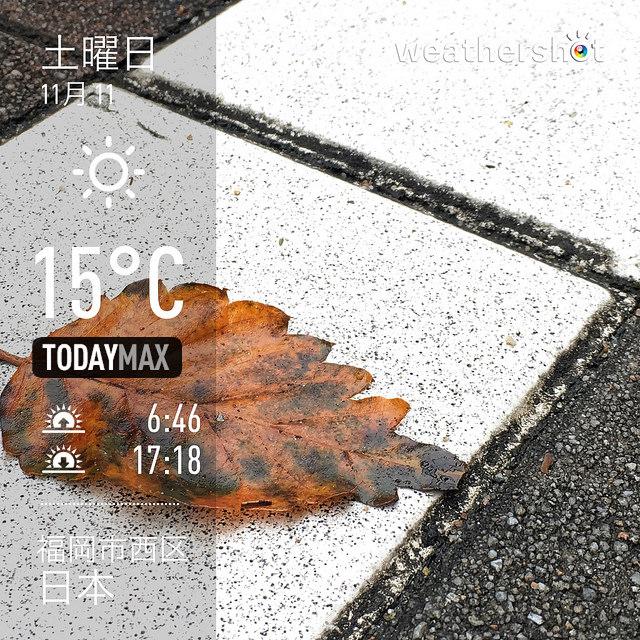 f:id:Snowowl:20171116092459j:image