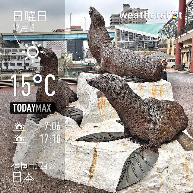 f:id:Snowowl:20171206091321j:image