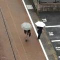[街角][雨]2018-01-05