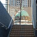 [御茶ノ水][東京]東京復活大聖堂(2017-01-21)