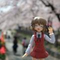 [figma][フィギュア][桜]天神中央公園にて(2018-03-29)