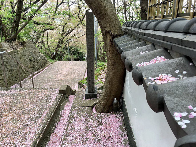 鷲尾愛宕神社(2018-04-05)
