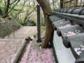 [桜][階段][神社]鷲尾愛宕神社(2018-04-05)
