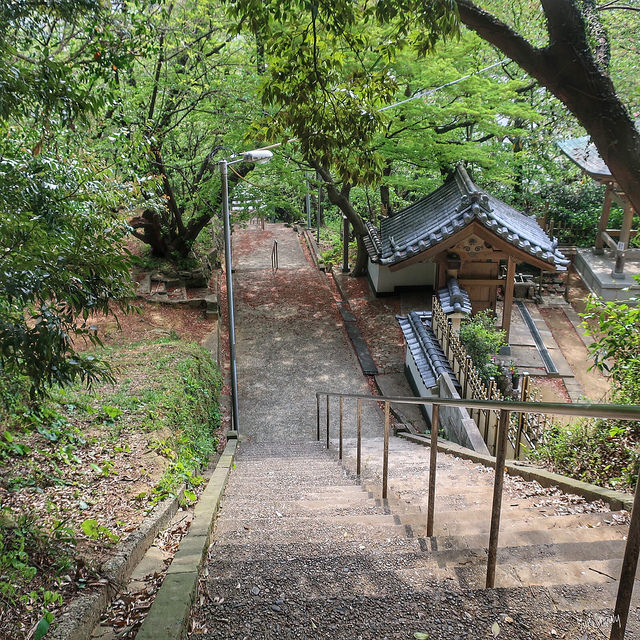 鷲尾愛宕神社(2018-04-11)