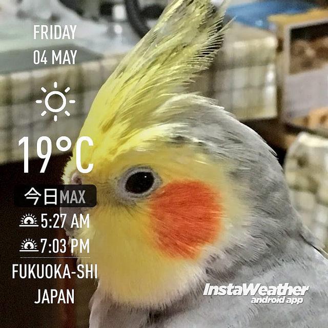 f:id:Snowowl:20180506092716j:image