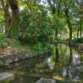 [福岡]福岡市植物園(2018-06-02)