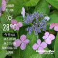 [Instaweather]2018-06-03
