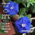 [Instaweather]2018-06-06