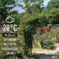 [Instaweather]2018-06-10