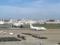 福岡空港(2018-06-22)